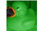 CAM duck - green